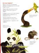 фото-Книга про тварин 003